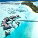 Les Maldives veulent revoir vite les touristes français